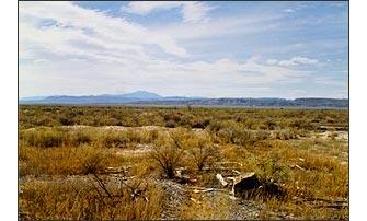 Site of the Topaz Camp in the Utah desert.